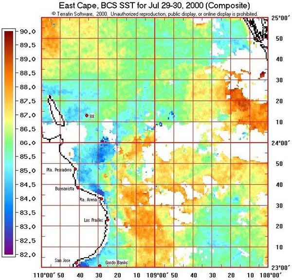 Terrafin Sea Surface Water Temperature SST Maps - Mexico temperature map
