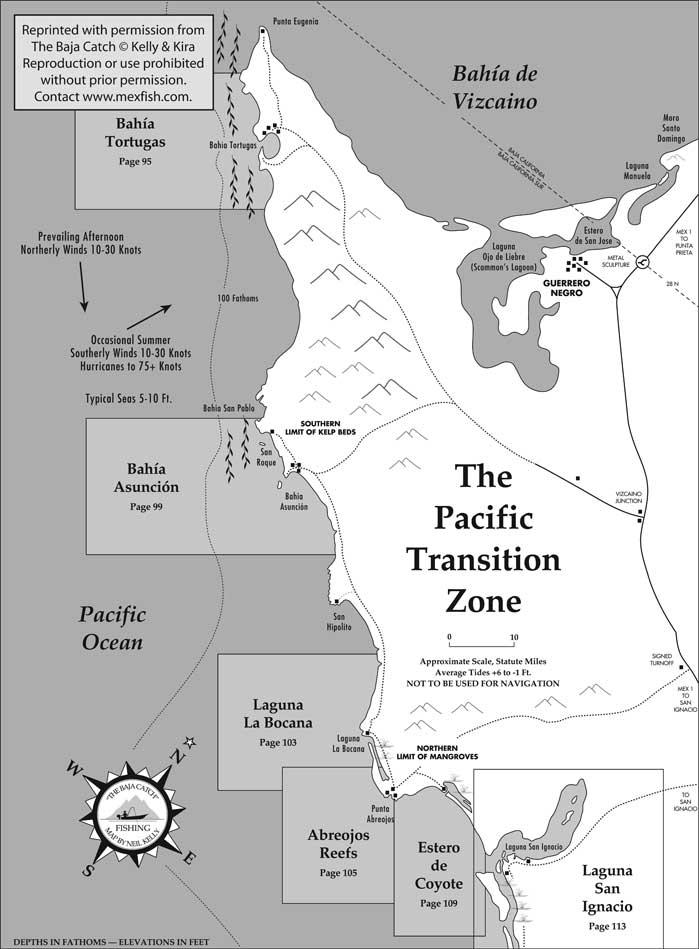 Baja pacific transition zone fishing map for Baja california fishing