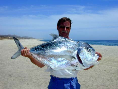 Big eye jacks masterbaiters 39 s sportfishing tackle blog for Pompano fish good to eat