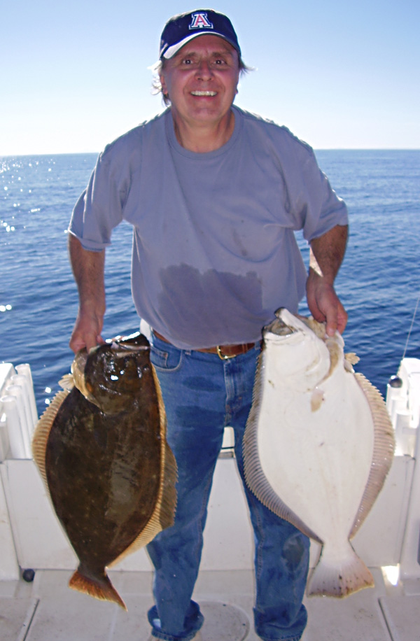 California halibut fish pictures and species identification for California halibut fishing