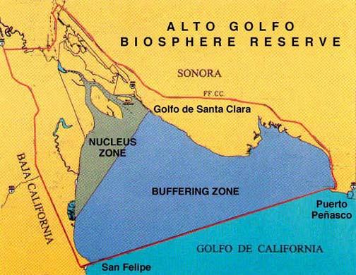 Alto Golfo de California Biosphere Reserve