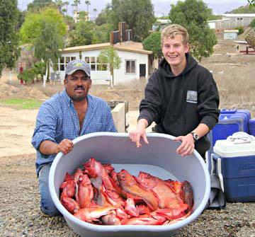 Bahia de los angeles winter yellowtail fishing on the bite for Lake elsinore fishing report