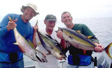 Yellowfin tuna season debut at san quintin sportfishing for Lake elsinore fishing report