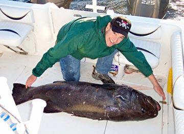 Ensenada 39 s punta banda fishing yields bottom fish limits for Rocky point fishing charters