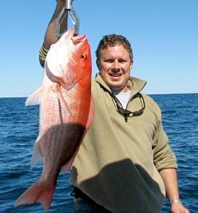 Yellowtail bottom fish hitting at bahia de los angeles for Gustafson s smoked fish