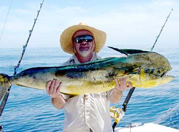 Dorado marlin and tuna in loreto sportfishing waters for San carlos mexico fishing