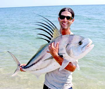 East Cape Roosterfish Go Bubba Size Peanut Dorado Swarms