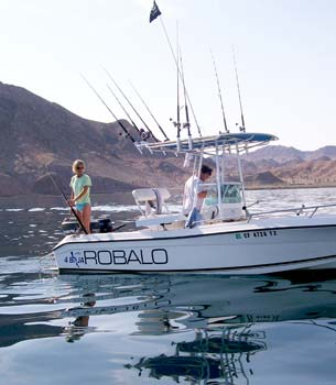 Summer yellowtail sportfishing on a roll at bahia de los for Fishing in los angeles