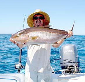 Summer fishing takes off for la paz pangas mazatlan for Cabo san lucas fishing season