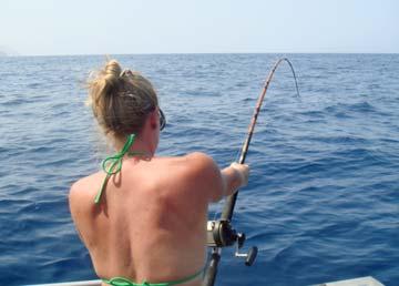 Nutrisystem blogspot searcher sportfishing fish count