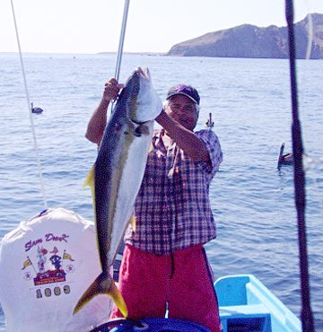 Loreto summer dorado fishing busts wide open northern for Fishing los angeles