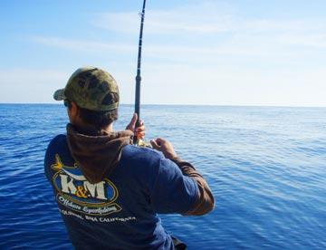 Cabo san lucas fall marlin fishing season is going full for Cabo fishing seasons
