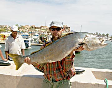 Loreto fishing boats converge on san bruno as yellowtail for San carlos mexico fishing
