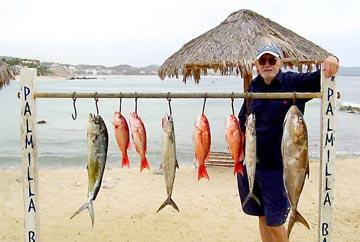 San jose del cabo fishing with capt domingo out of punta for San jose del cabo fishing report