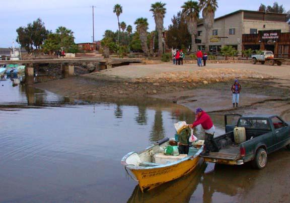 San Quintin Fishing Reports And Sportfishing Vacation Information