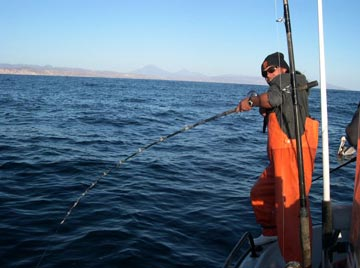 essay on the life of fisherman Free essay: he started off his in his life hemingway experienced events that would change him and shape the more about an old fisherman in the old man and the.